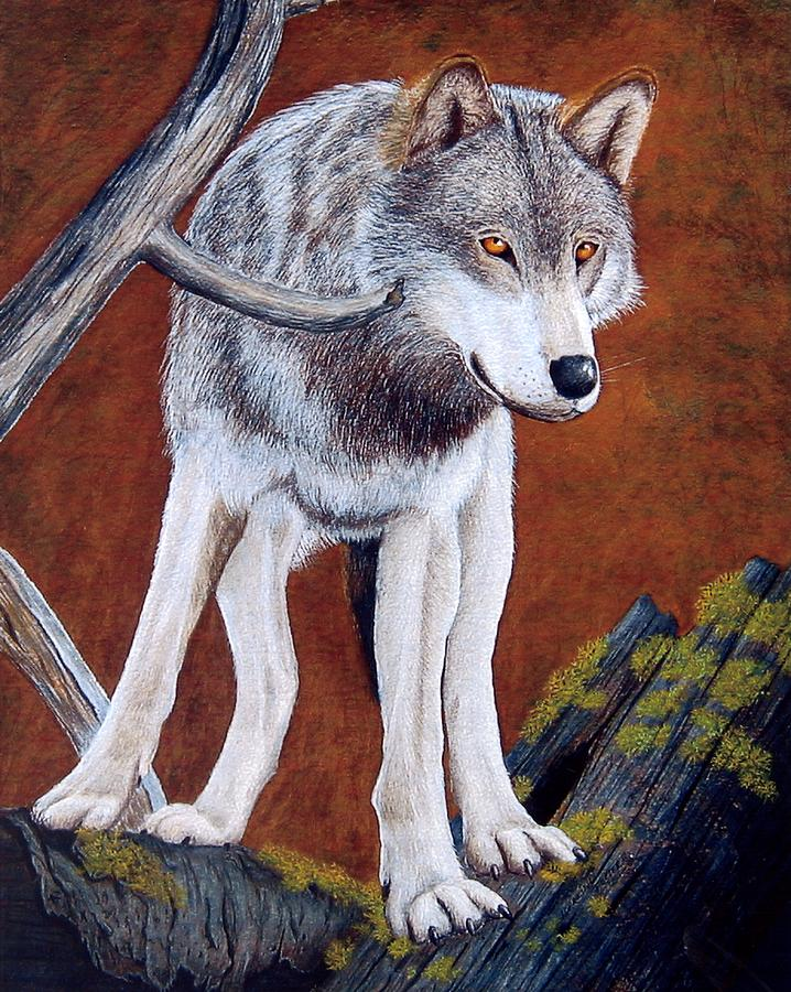 Guardian Mixed Media - Guardian Of The Den by Lorraine Foster