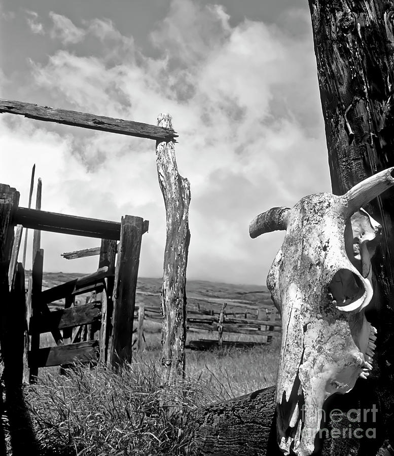 Black And White Photograph - Guardian Spirit  by Jim Cazel