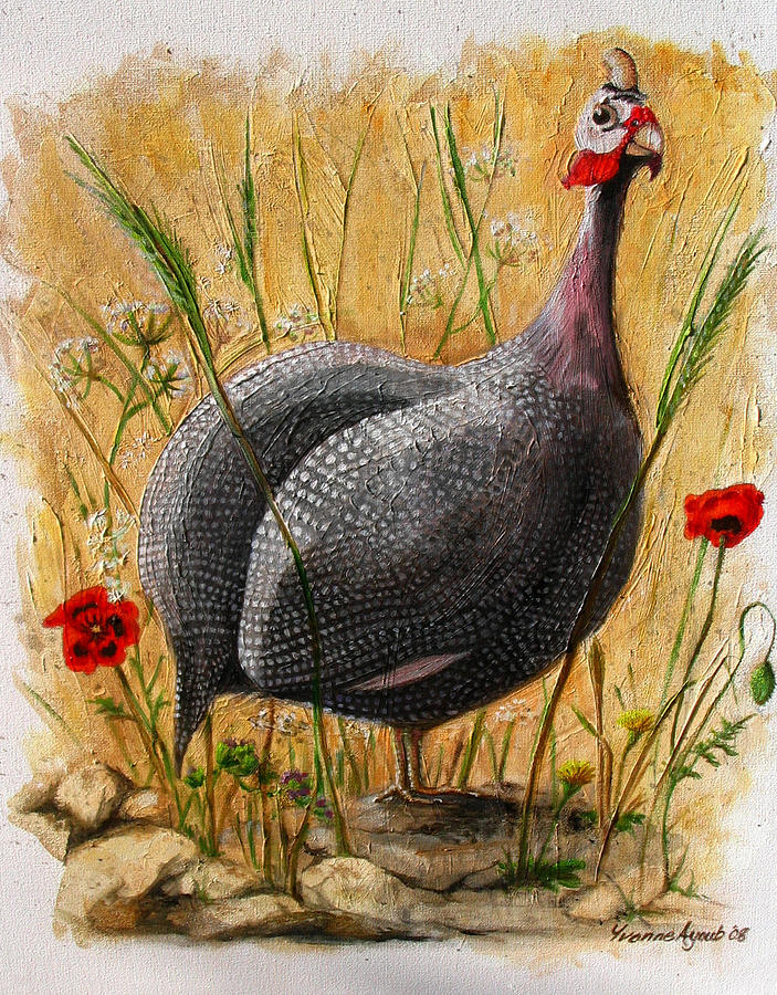 Bird Painting - Guinea Fowl With Poppies by Yvonne Ayoub
