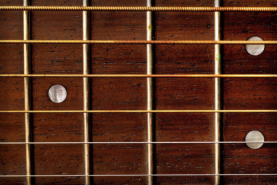 Guitar Fret Board Photograph