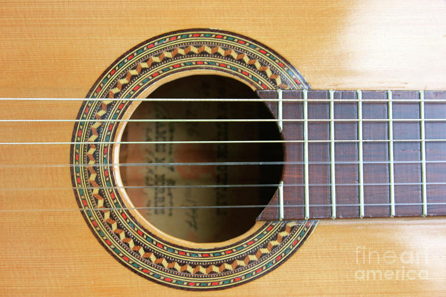 Guitar Rosette by The Art of Alice Terrill
