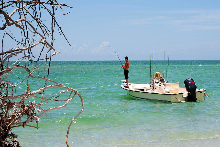 Stump Pass Beach State Park Photograph - Gulf Fisherman by Steven Scott