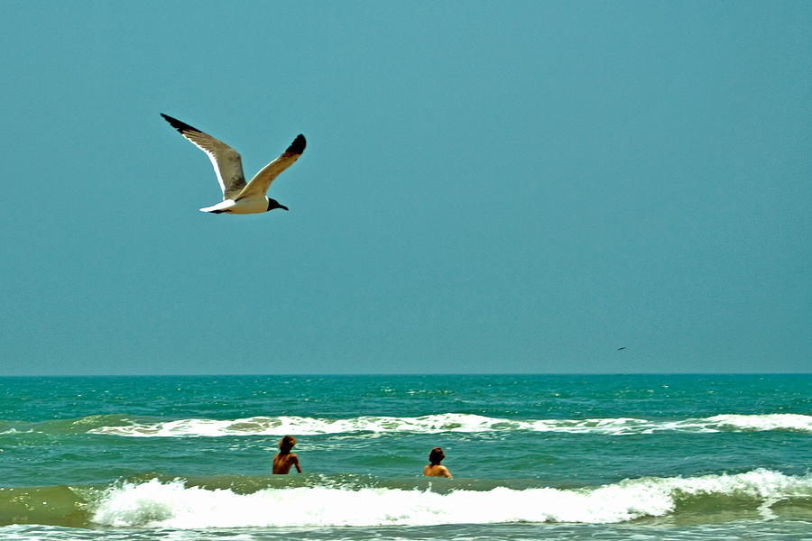 Water Photograph - Gulf Of Mexico From Padre Island by Jorge Gaete