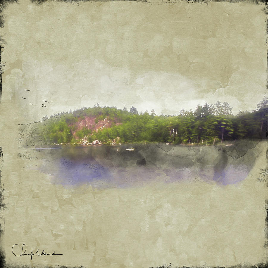 Gull Pond by Christopher Meade