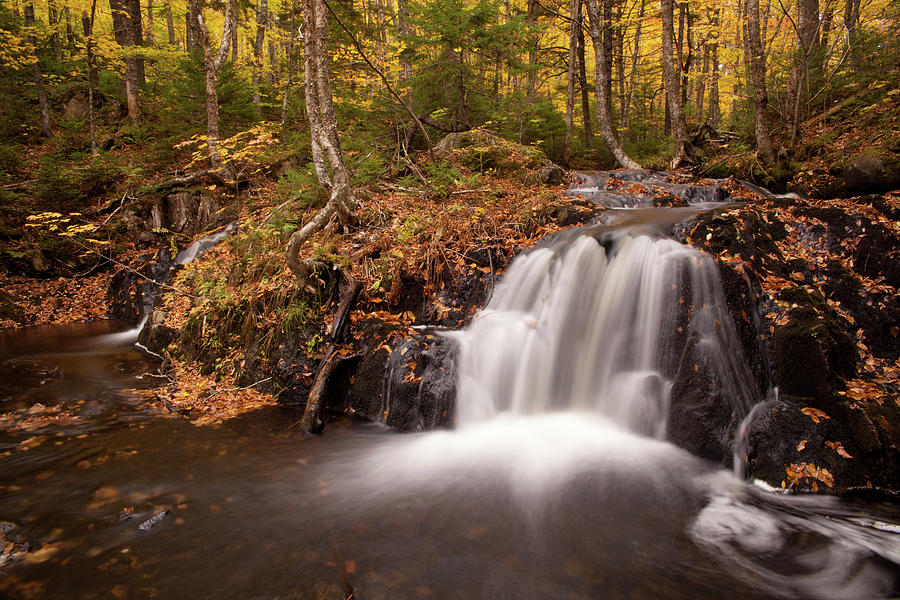Autumn Photograph - Gully Lake Cascades #1 by Irwin Barrett