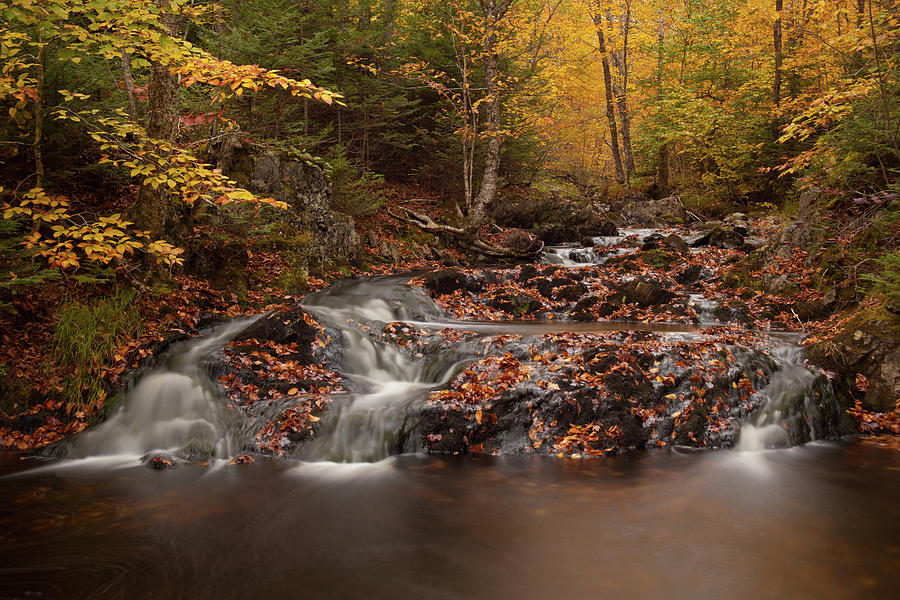 Autumn Photograph - Gully Lake Trail Cascades #2 by Irwin Barrett