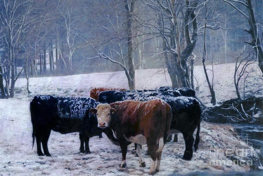 Cows Mixed Media - Gwyns Cows by Chris Elliott-Davis