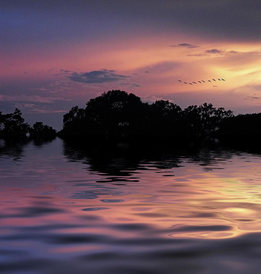 Sunset Photograph - Sunset Flock by Jessica Jenney