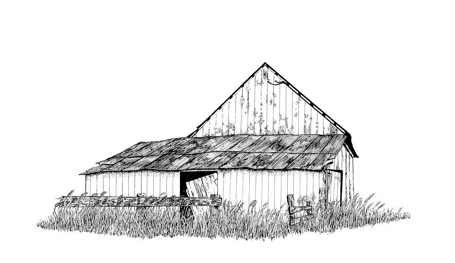 Pen And Ink Painting - Haines Barn by Virginia McLaren