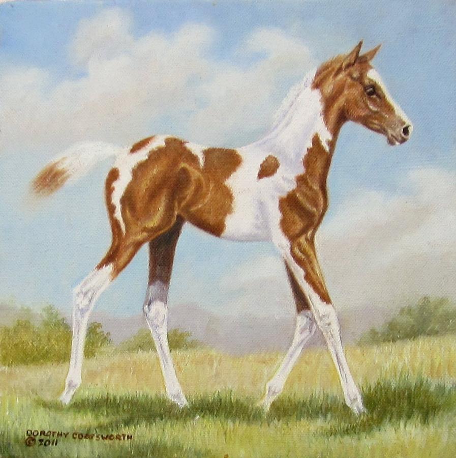 Horse Painting - Half Arabian Pinto Filly by Dorothy Coatsworth