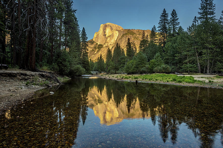 California Photograph - Half Dome from  the Merced by Peter Tellone