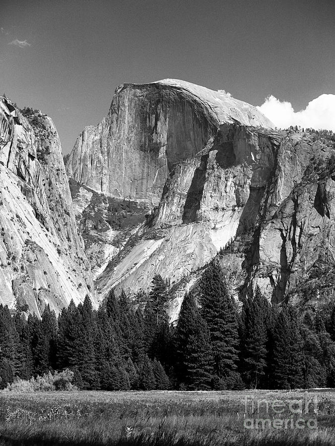 Half Dome by Ron Sadlier