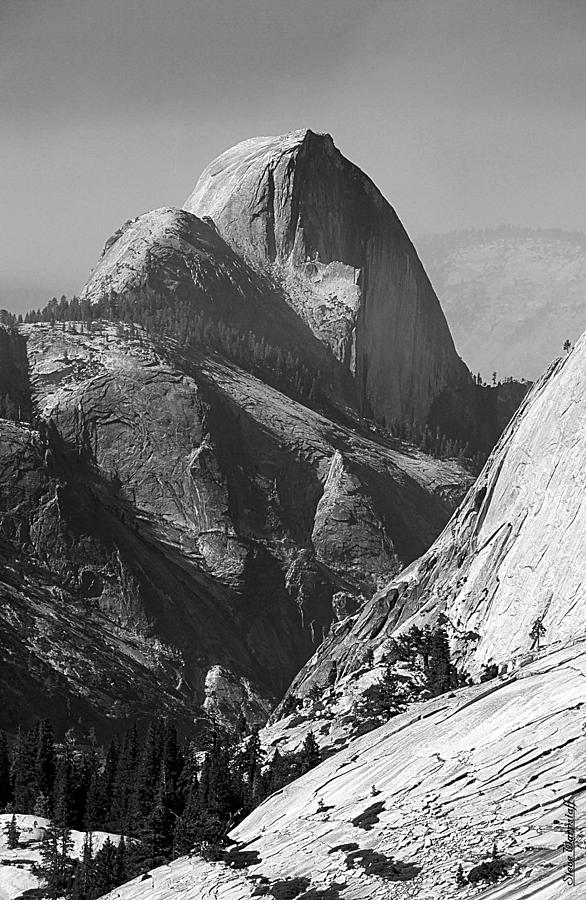 Yosemite Photograph - Half Dome by Steve Warnstaff