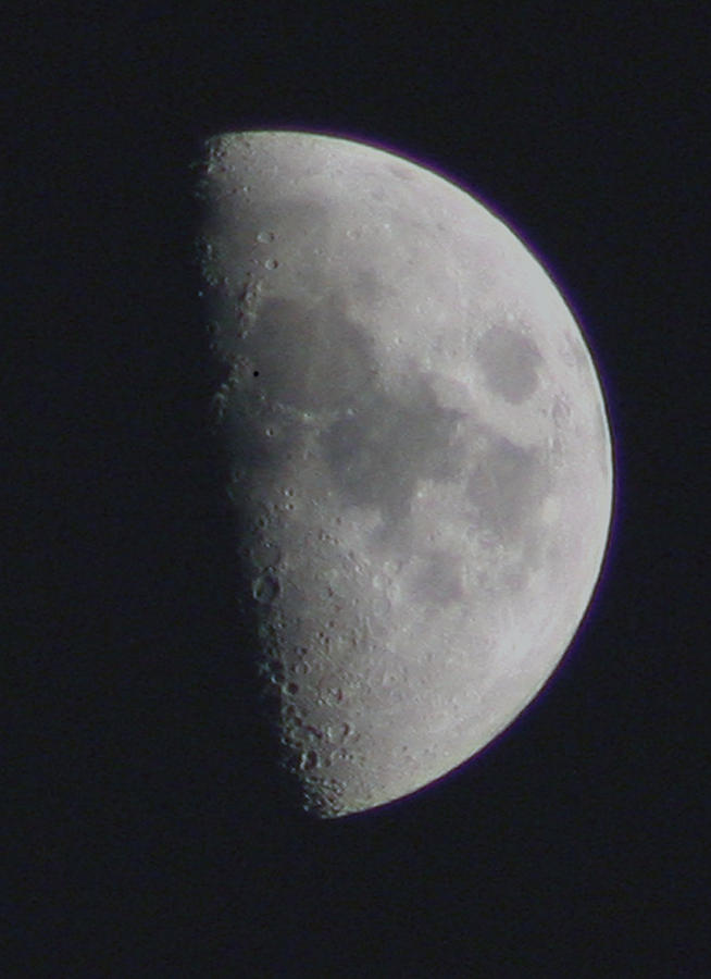 Moon Photograph - Half Moon by David Campbell
