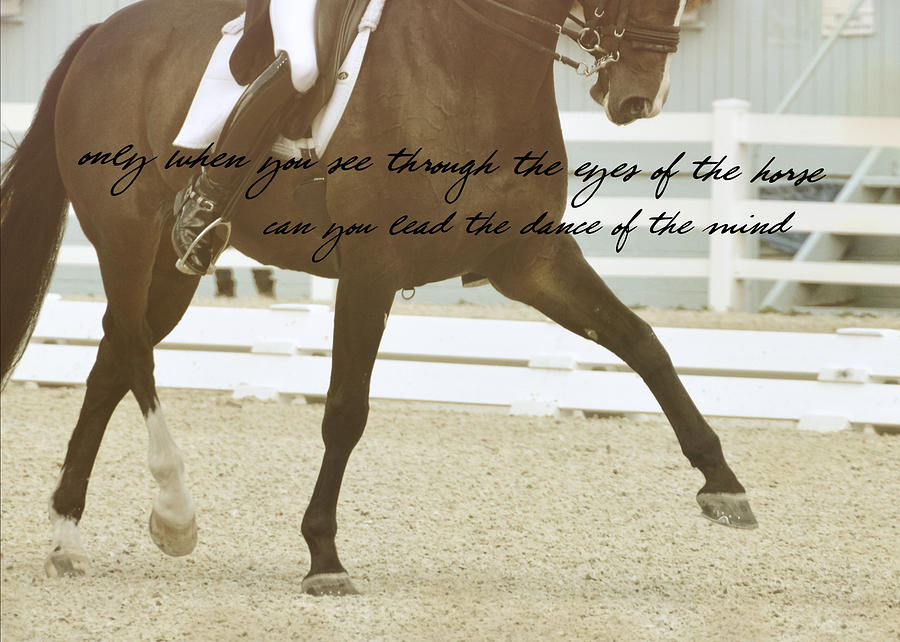 Dressage Photograph - Half Pass Quote by JAMART Photography