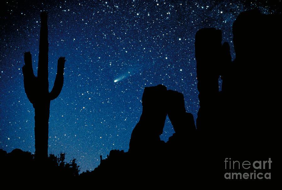 Halley's Comet Photograph - Halleys Comet by Frank Zullo
