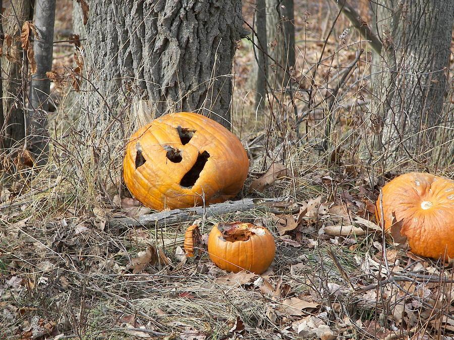 Pumpkin Photograph - Halloween Leftovers by JAMART Photography