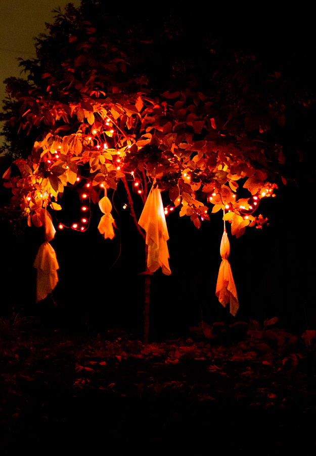 Halloween Tree by Shannon Kunkle