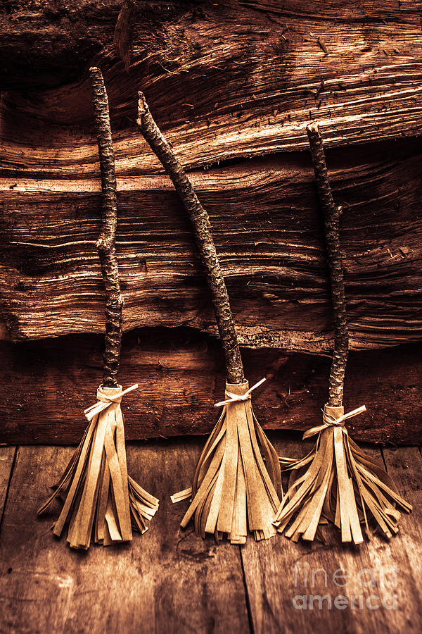 Witch Photograph - Halloween Witch Brooms by Jorgo Photography - Wall Art Gallery