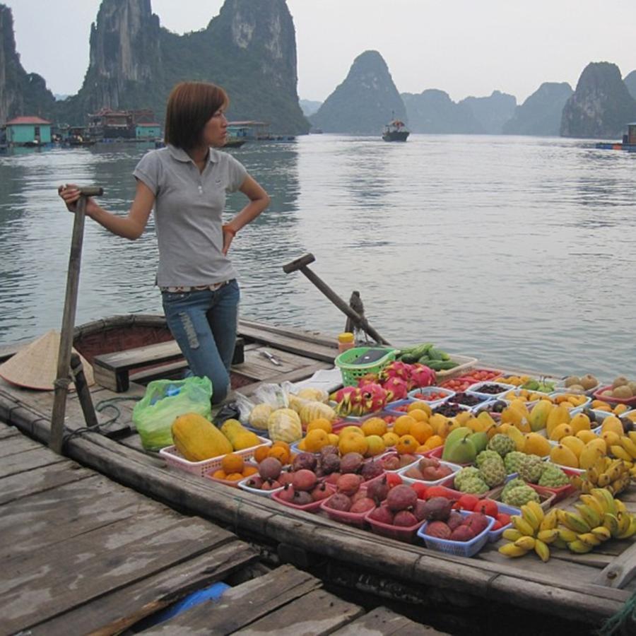 Life Photograph - Halong Bay Fruit Shop #vietnam by Paul Dal Sasso
