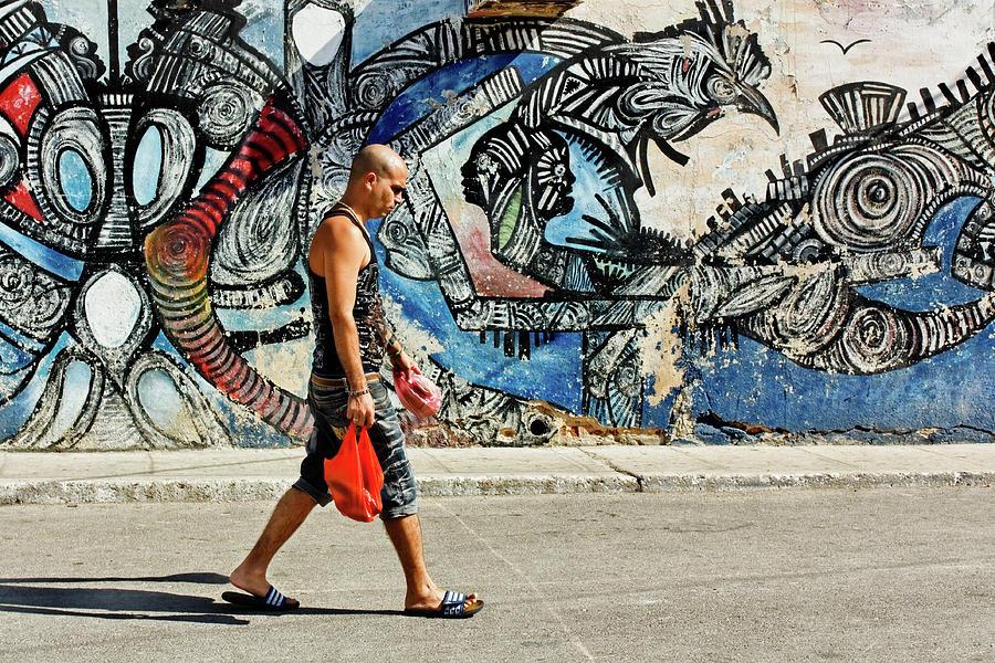 Artwork Photograph - Hamel Street by Dawn Currie