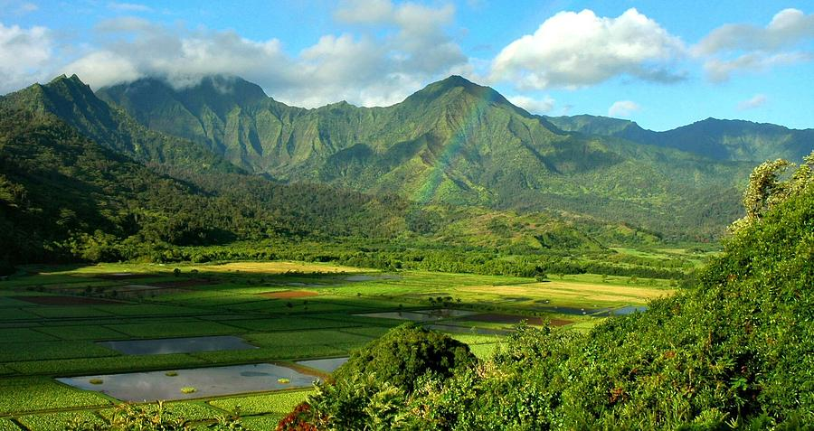 Hawaii Photograph - Hanalei Valley Rainbow by Stephen Vecchiotti