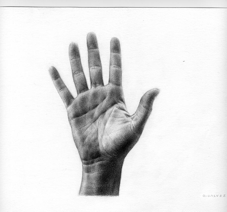 Hand Drawing - Hand by Galvez Miro