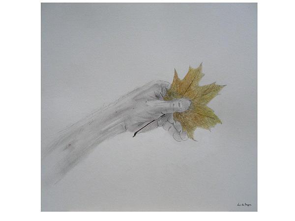Autumn Drawing - Hand Holding An Autumn Leaf by Leo  De Freyne