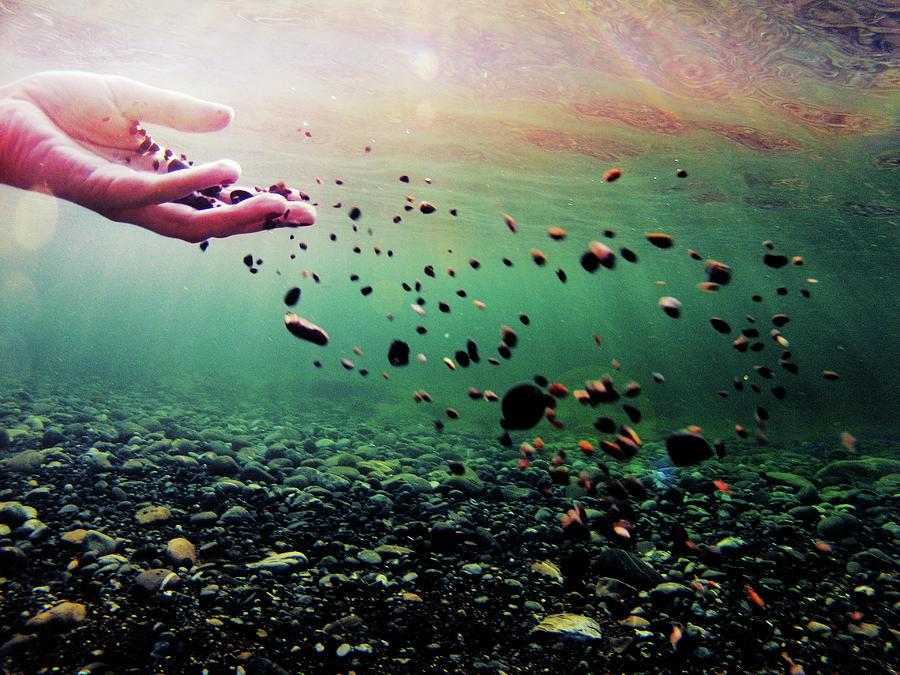 Hand II by Gemma Silvestre