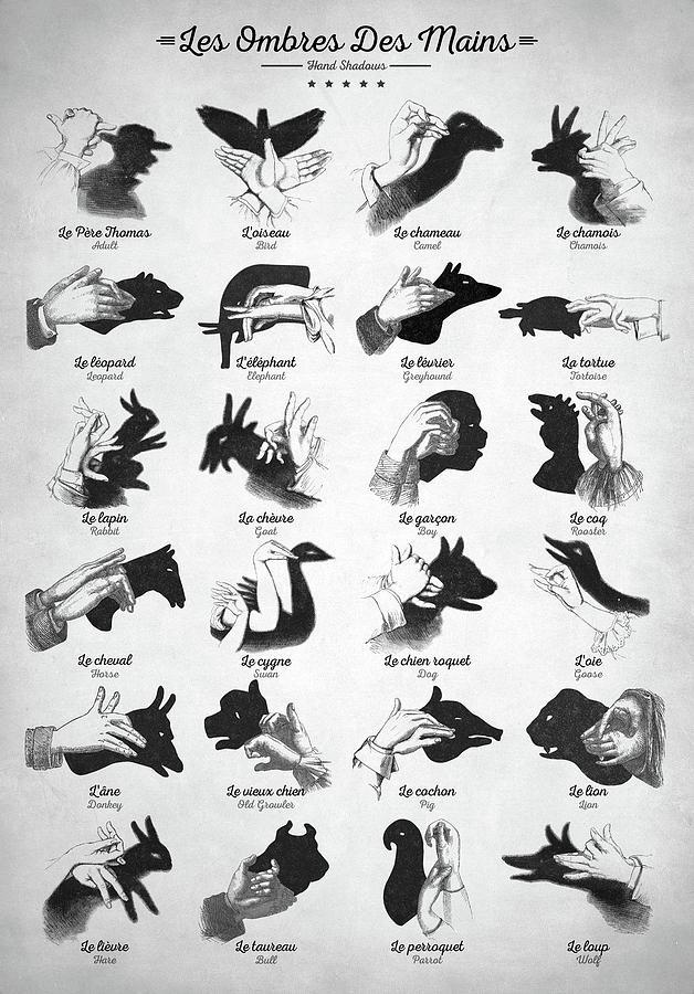 Hand Shadows Digital Art - Hand Shadows by Zapista OU