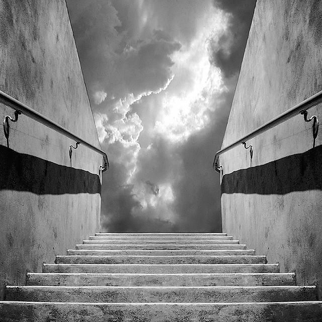 Black & White Photograph - Handrail by Paul Bracey