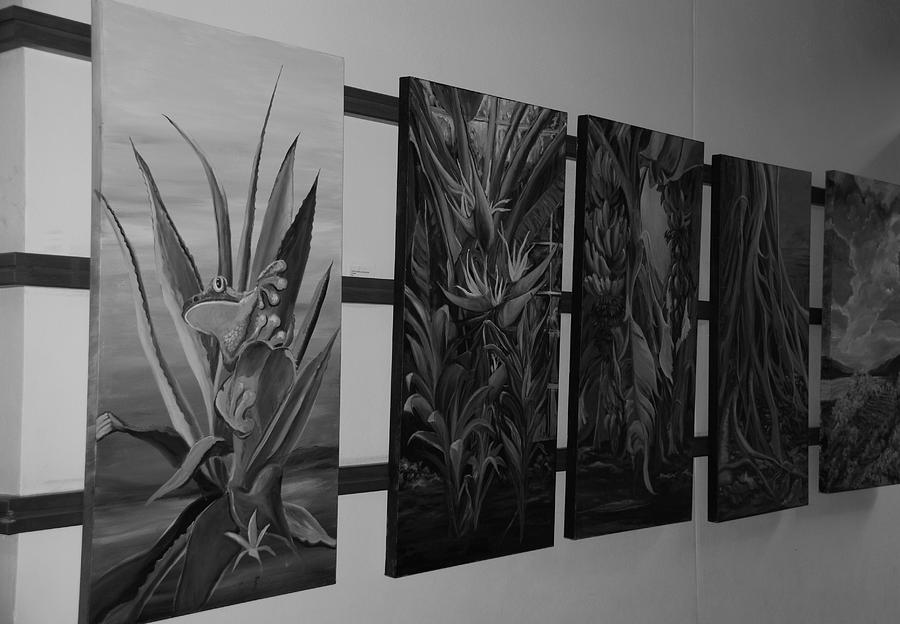 Black And White Photograph - Hanging Art by Rob Hans