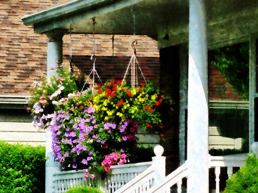 Flowers Photograph - Hanging Baskets by Susan Savad