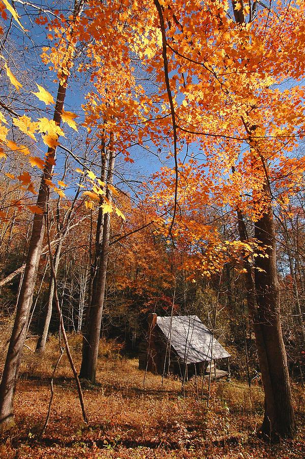 Log Cabin Photograph - Hannah Cabin by Alan Lenk