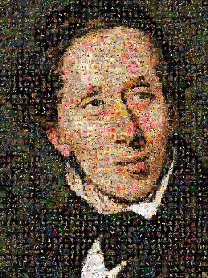 Mosaic Digital Art - Hans Christian Andersen by Gilberto Viciedo