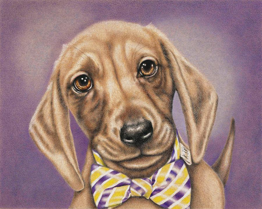 Dachshund Drawing - Hans The Dachshund by Karrie J Butler