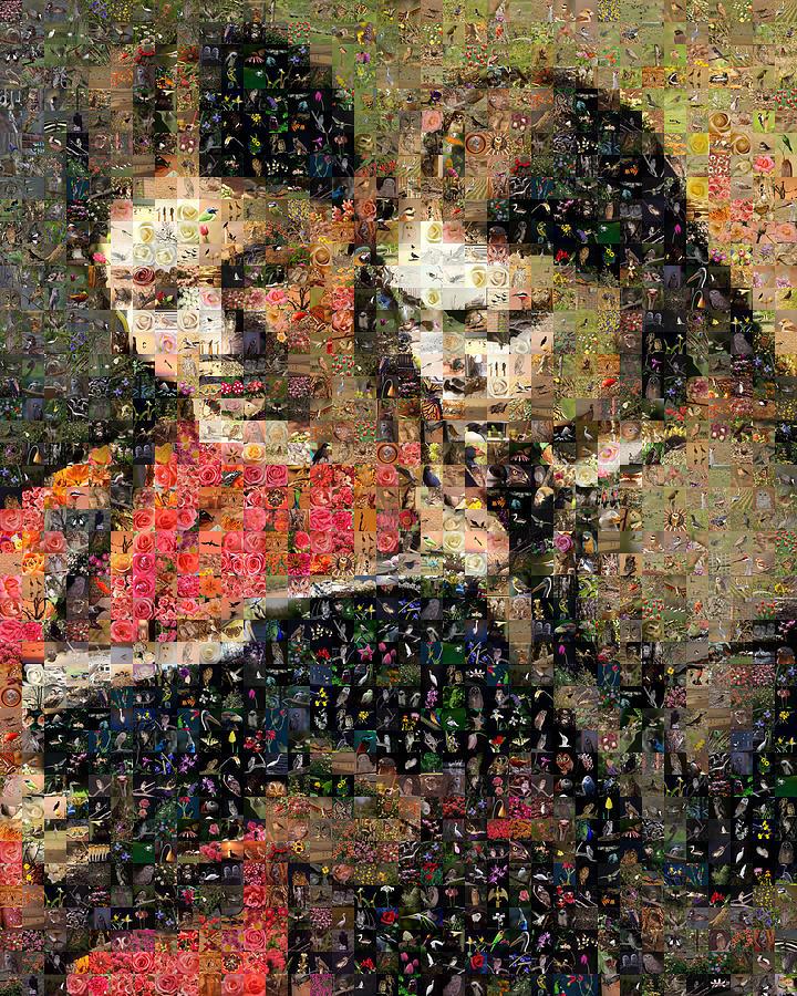 Mosaic Digital Art - Hansen Sisters by Gilberto Viciedo