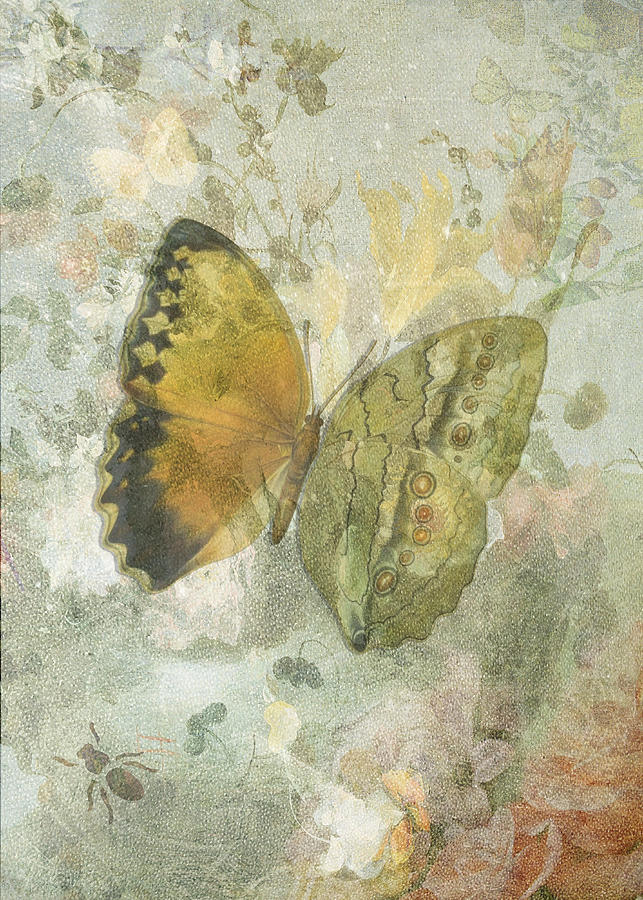 Butterflies Digital Art - Happiness Is A Butterfly by Sarah Vernon