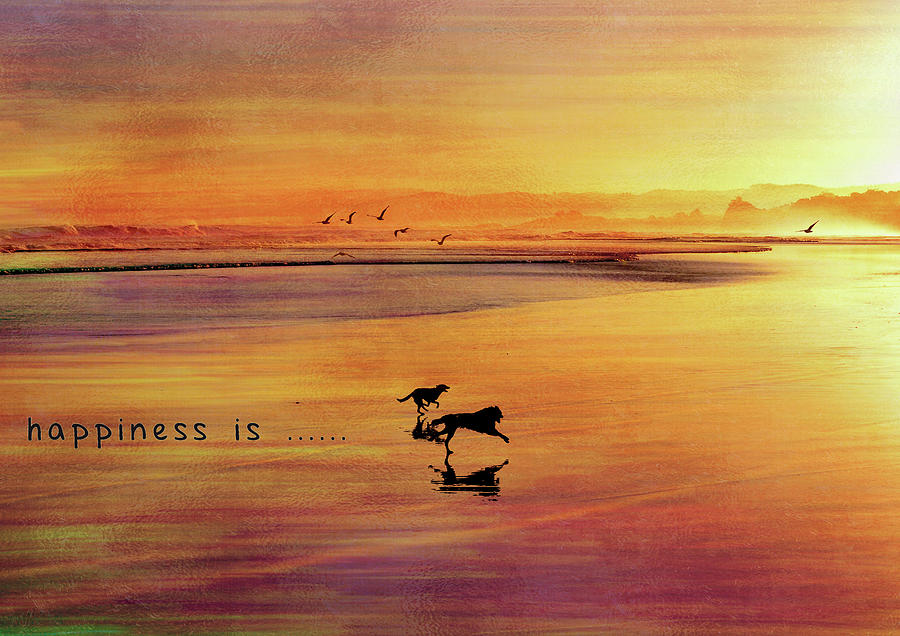 Landscape Photograph - Happiness Is by Shivonne Ross