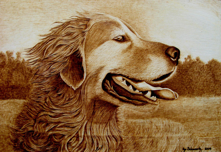 Dog; Setter; Irish Setter; Wind; Happy; Sepia; Woodburning; Pyrography; Hunt; Field;sunshine;tongue Pyrography - Happiness by Jo Schwartz