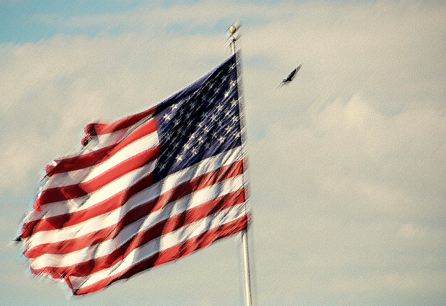 Flag Photograph - Happy Birthday America by Susanne Van Hulst