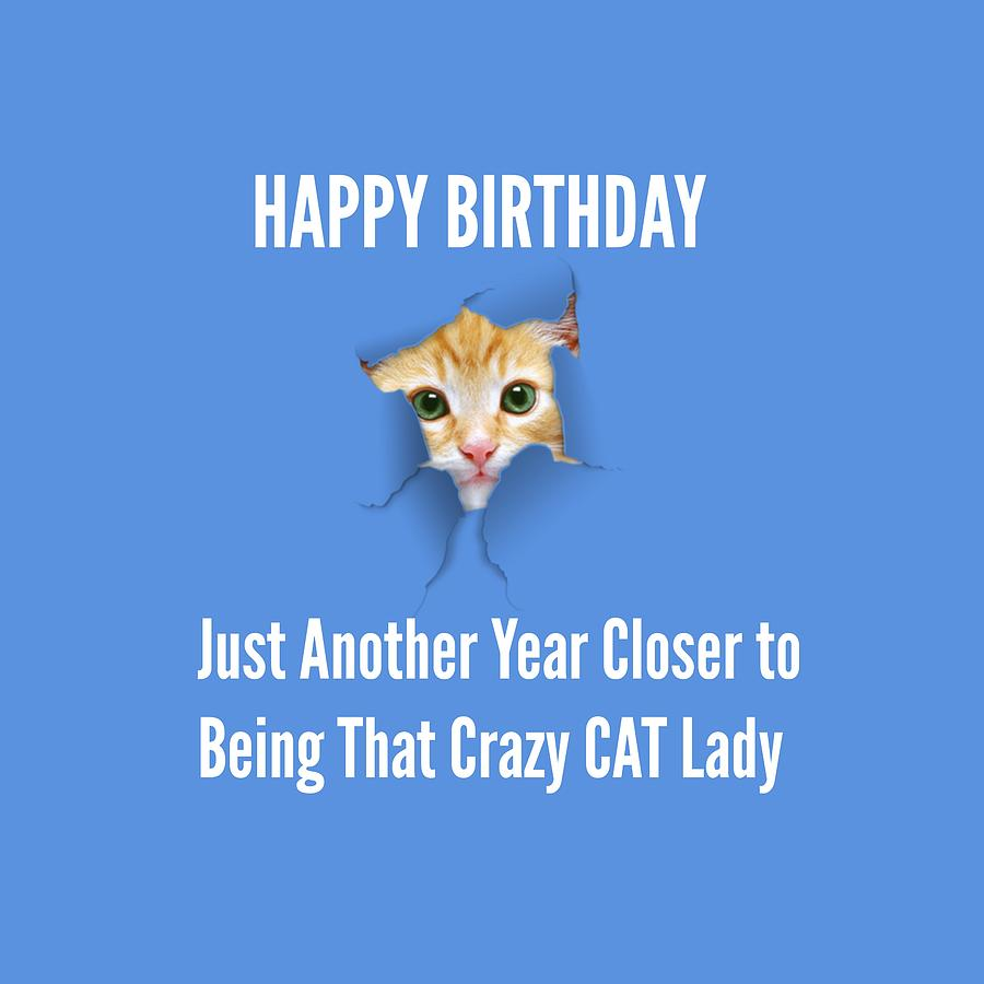 Happy Birthday Crazy Cat Lady Digital Art By Richard Wright