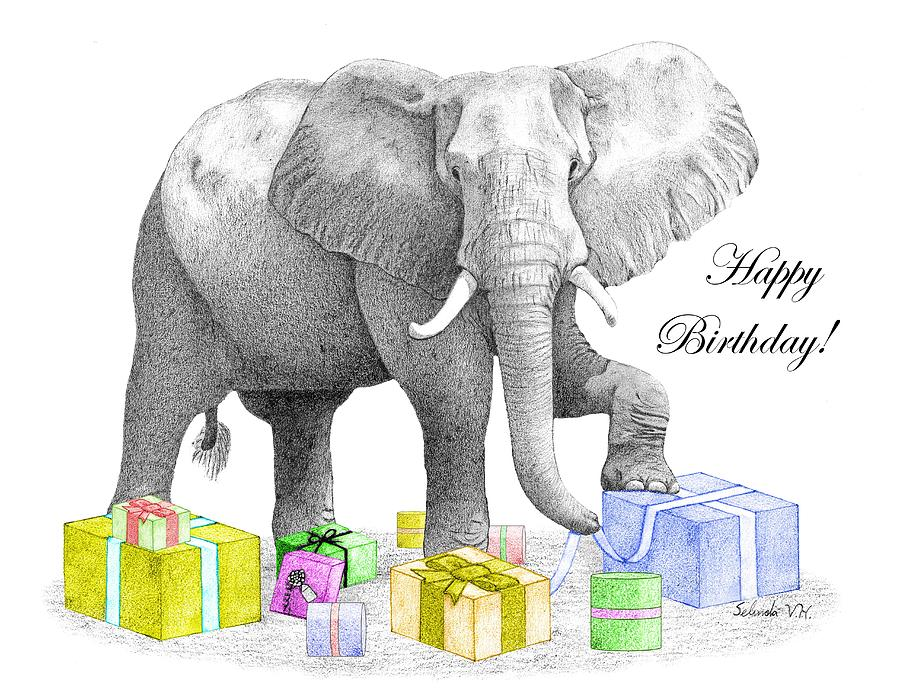 Happy Birthday Elephant Drawing By Selinda Van Horn