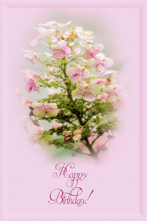 Happy birthday greeting hydrangea photograph by mother nature happy birthday photograph happy birthday greeting hydrangea by mother nature m4hsunfo
