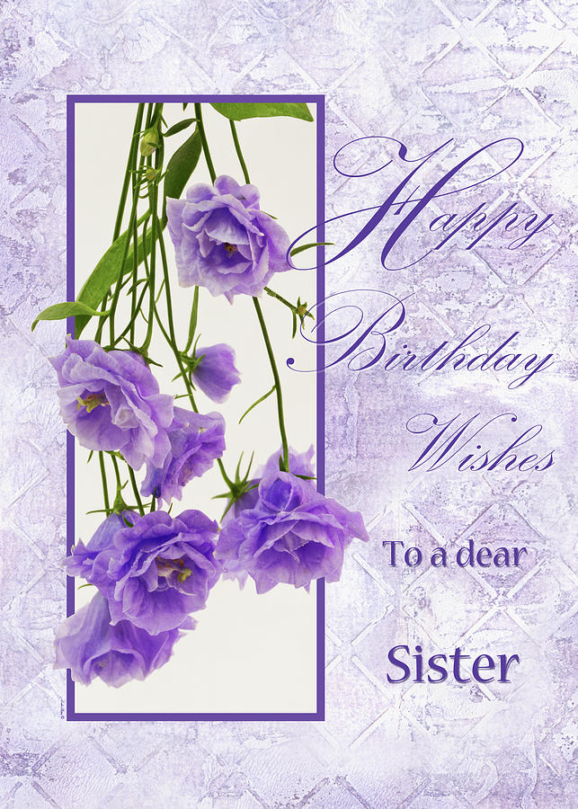 Happy Birthday Wishes To A Dear Sister Photograph By Sandra Foster