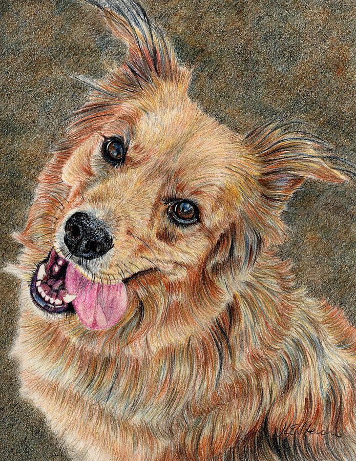 Dog Portrait Drawing - Happy Dog by Joanne Stevens