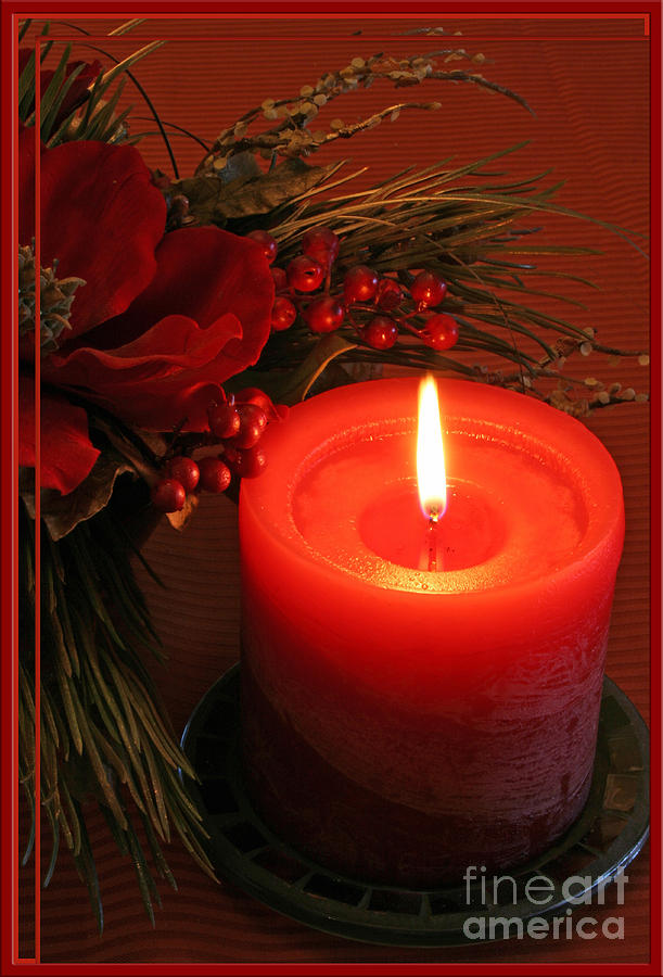 Christmas Photograph - Happy Holidays #1 by Teresa Zieba