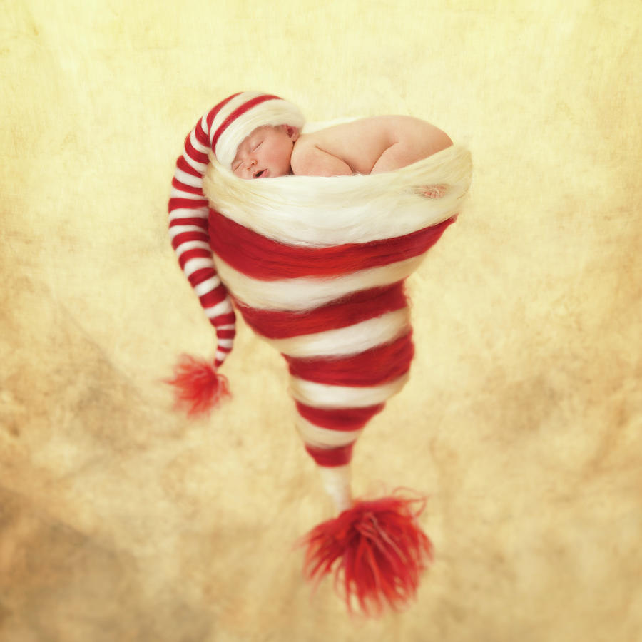 Holiday Photograph - Happy Holidays by Anne Geddes