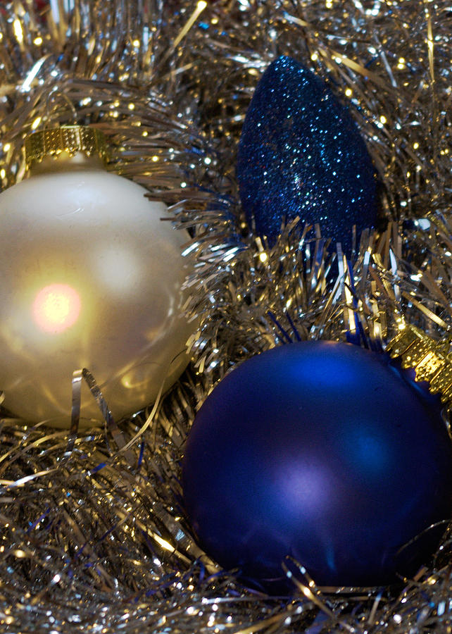 Holidays Photograph - Happy Holidays Card 02 by Karen Musick