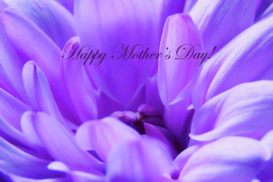 Happy Mothers Day Purple Photograph By Johanna Hurmerinta